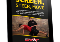 Screen, Steer, Move – Stream